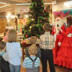 новогодняя елка, аниматоры, аквагример, мастер классы, шоу мыльных пузырей, подарки, детские игры